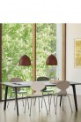 ANT™ Chair Colored Ash by Arne Jacobsen