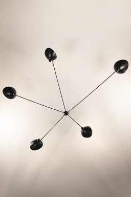 Serge Mouille - Serge Mouille Spider Wall Light with 5 fixed arms